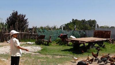 Clip: Ghé thăm làng phụ nữ Việt Nam tại Morocco
