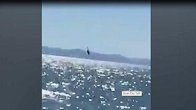 Trực thăng hải quân Mexico đâm sầm xuống biến khi đang tuần tra