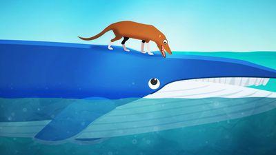 Cá voi trở thành loài động vật lớn nhất hành tinh theo cách như thế nào?