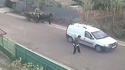 Tai nạn hài hước khi cho xe ngựa chạy bằng động cơ ôtô ở Romania