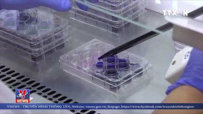 Chế tạo thành công loại virus diệt tế bào ung thư