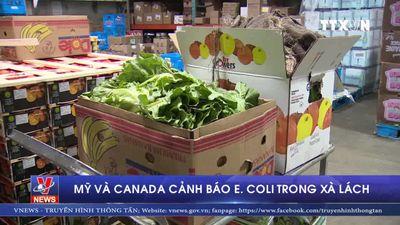 Mỹ và Canada cảnh báo E. coli trong xà lách
