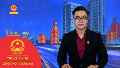 BẢN TIN DÒNG CHẢY CỦA TIỀN CHIỀU NGÀY 21/11/2018