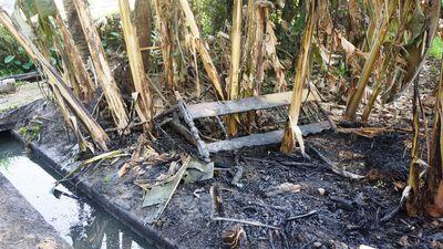 4.000 lít dầu tràn khiến kênh bốc cháy, tôm cá chết đầy đồng