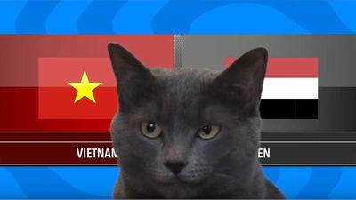 Mèo Cass dự đoán kết quả trận Việt Nam vs Yemen hôm nay 16/1