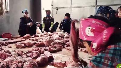 Clip: 'Hô biến' lợn chết sấy khô thành món đặc sản thơm phức