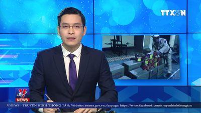 Bắc Kạn bắt giữ vụ vận chuyển trái phép 234 kg pháo