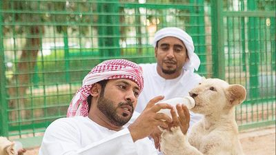 Thú vui nuôi sư tử và sở thích xa hoa của giới nhà giàu Dubai