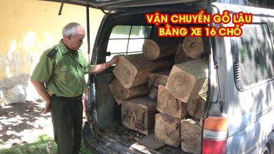 Tây Ninh điều tra vụ vận chuyển gỗ lậu bằng xe 16 chỗ.