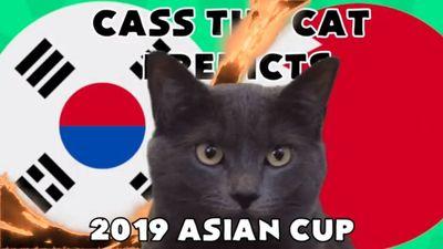 Mèo Cass 'tiên tri' kết quả trận Hàn Quốc vs Bahrain tối nay 22/1