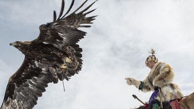 Cuộc sống săn sói, selfie cùng đại bàng của cô bé Mông Cổ 14 tuổi