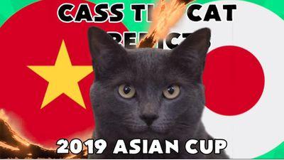 Dự đoán kết quả trận Việt Nam vs Nhật Bản ngày 24/1 của mèo Cass