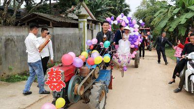 Lạ lẫm màn rước dâu dùng máy cày kéo xe bò ở Nghệ An