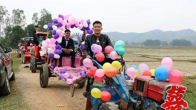 Màn rước dâu dùng máy cày kéo xe bò độc đáo ở quê nghèo Nghệ An