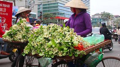 Hoa bày đĩa gần triệu đồng khiến người dân Hà Nội thích thú