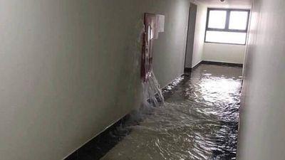 Sống trên tầng 21 vẫn bị ngập, Cư dân An Bình City lo sợ, bức xúc
