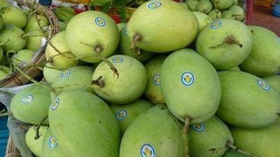 6 loại trái cây Việt được vào thị trường Mỹ 'khó tính'