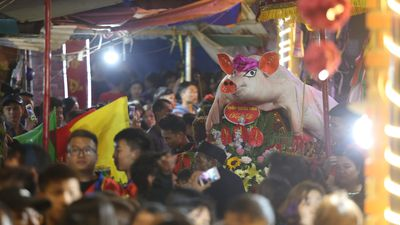 Hàng ngàn người dự lễ hội rước 17 'ông lợn' nặng từ 150 - 250 kg ở Hà Nội