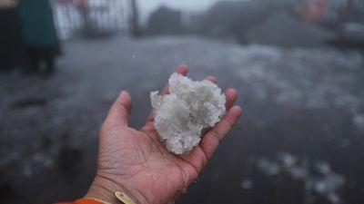Tuyết rơi ở Sa Pa khiến mọi người phấn khích