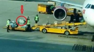 Ném hành lý ở sân bay, 2 nhân viên bị cảnh cáo
