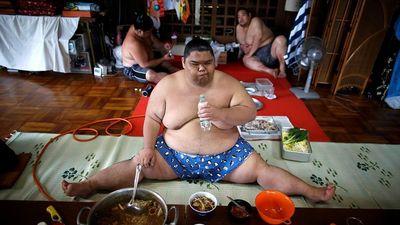Đô vật Sumo hấp thụ 7.000 calo mỗi ngày mà vẫn khỏe mạnh?