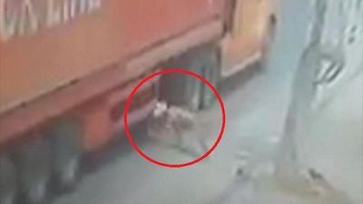Lao vào bánh xe container, người đi đường may mắn thoát chết