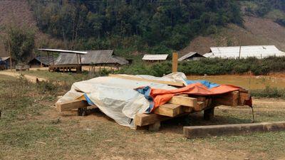 Cận mặt lâm tặc phá rừng Chiềng Khừa