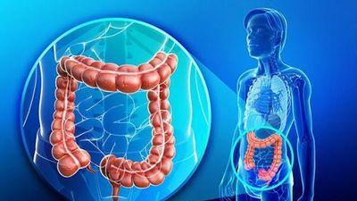 Những dấu hiệu của bệnh ung thư đại tràng