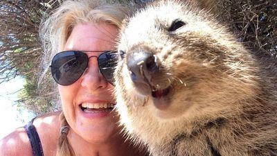 Selfie cứu loài động vật hạnh phúc nhất thế giới khỏi tuyệt chủng