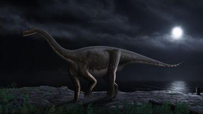 Sẽ ra sao nếu con người sống trên siêu lục địa 200 triệu năm trước?