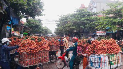 Người dân Bắc Giang vui mừng khi giá vải cao gấp 10 lần năm ngoái