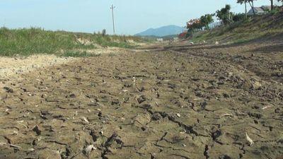 Hàng nghìn hộ dân Quảng Bình thiếu nước sạch vì khô hạn kéo dài
