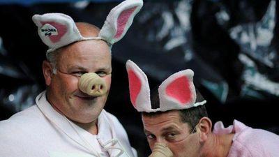 Cười không ngớt tại lễ hội tôn vinh lợn độc đáo