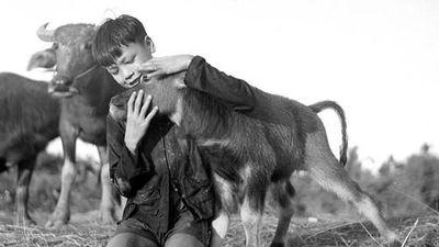 Ảnh cực chất về đồng quê Việt Nam thập niên 1950
