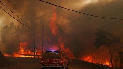 Hãi hùng cảnh cháy rừng hoành hành Bồ Đào Nha