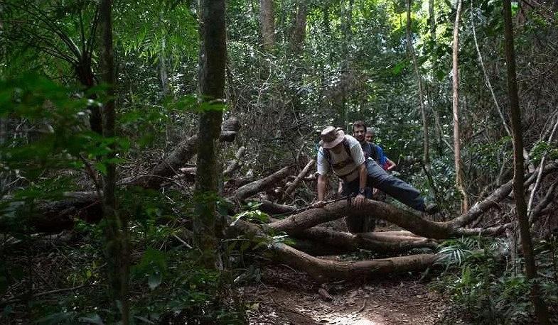 Brazil mở cửa tuyến đường mòn trong rừng dài 8.000 km
