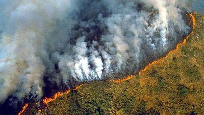 'Lá phổi' thế giới tan tác trong cơn hỏa hoạn tồi tệ nhất trong lịch sử