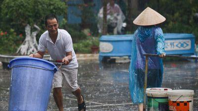 Cần khởi tố vụ án, quy trách nhiệm vụ nước sạch sông Đà ô nhiễm