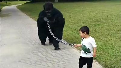 Cha hóa trang thành khỉ đột để con dắt đi chơi