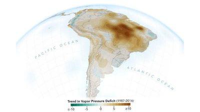 Con người đang làm khô cạn rừng nhiệt đới Amazon