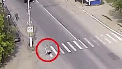 Chú chó cứu thoát chủ nhân khỏi bị xe tải đâm