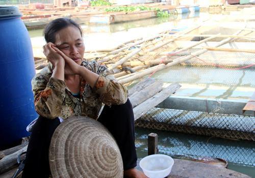Dân làng cá bè Đồng Nai: 'Tết này trắng tay rồi'