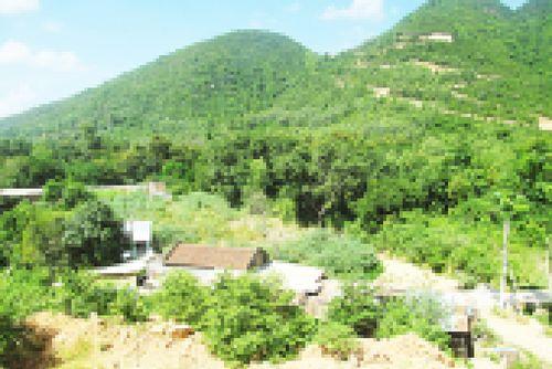 Đất Phước Đồng