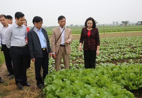 Phó Bí thư Thường trực Thành ủy kiểm tra Chương trình 02-CTr/TU tại Mê Linh