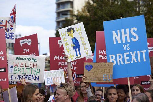 Đại tuần hành ở London, kêu gọi trưng cầu dân ý lần 2 về Brexit