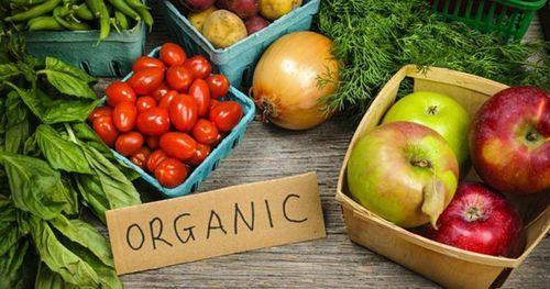 Sản phẩm Organic Việt Nam khẳng định chất lượng trên thị trường quốc tế