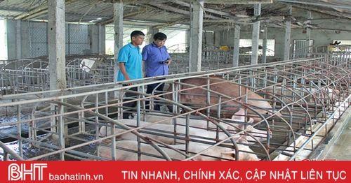 Nông dân Can Lộc thay đổi tư duy, bắt đất 'nhả vàng'!