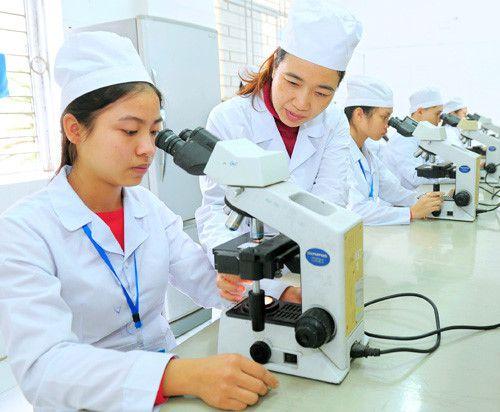 GII 2018 xếp Việt Nam đứng thứ 18/126 quốc gia về giáo dục