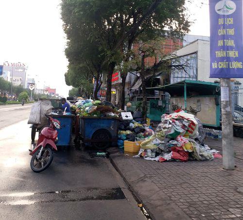 TP Cần Thơ: Những 'vật cản' khiến xe buýt khó phát triển