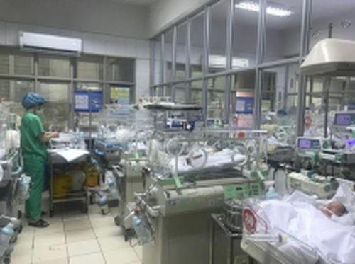 Nâng cao chất lượng giống nòi nhờ chẩn đoán dị tật trước sinh